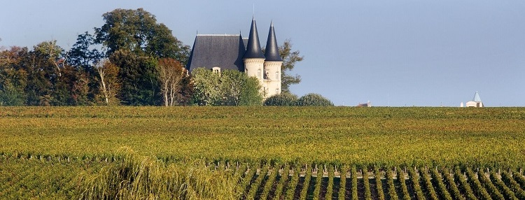 Bordeaux-vineyards3_750_slide.jpg